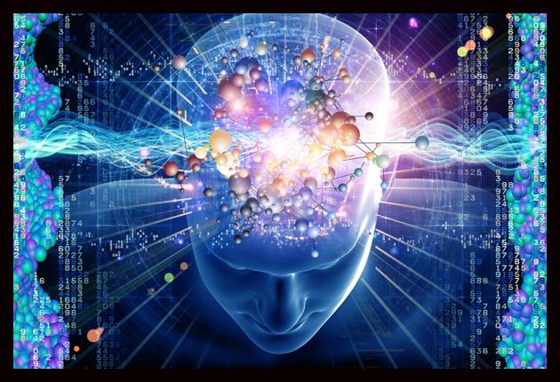 ¿Cómo reparar y regenerar tu cerebro?