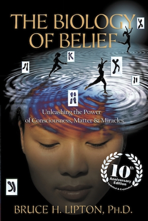 la biologia de la creencia de Bruce Lipton